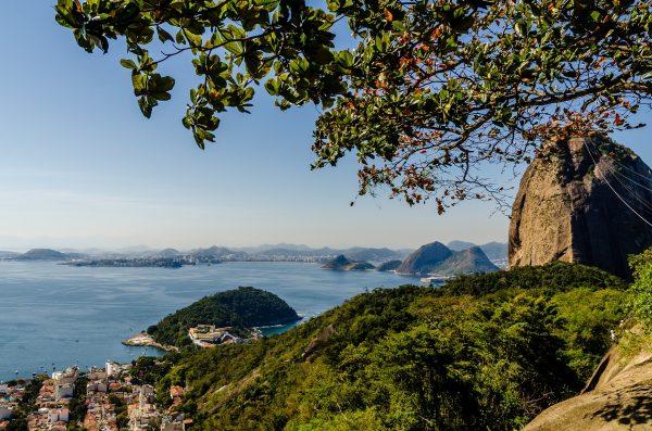 Trilha Morro da Urca Sou Mais Carioca